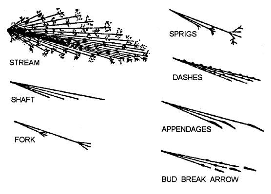 spark test terms