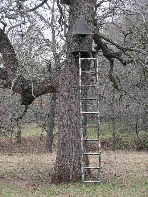 aluminum tree hunding stand